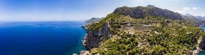 Las vides ocupan parte de la sierra de Tramontana, en Mallorca.