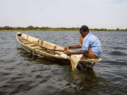 Barka Idriss mientras pesca en Tagal, en la región del Lago Chad (Chad).