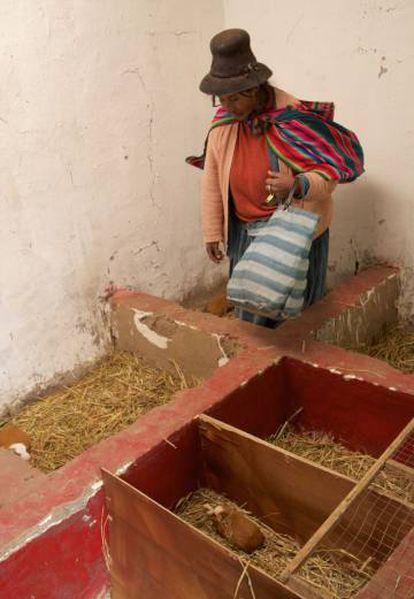 Pascuala Trujillo en el corral de cuyes que construyó con ayuda del programa de Acción Contra el Hambre en Ajoyani.