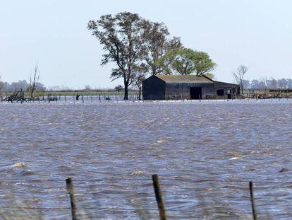 """Una casa de campo rodeada por el agua en el partido de General Villegas, provincia de Buenos Aires""""."""