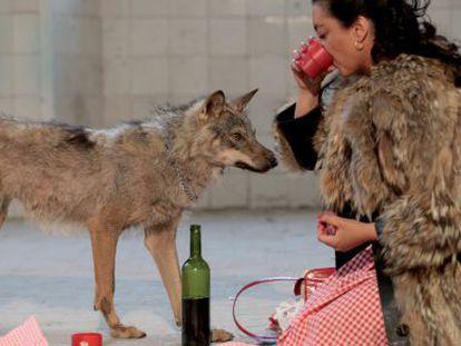 'She-wolf' (2006), de Pilar Albarracín.