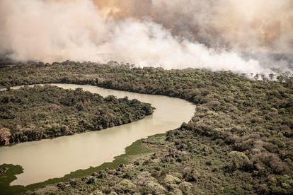 La sequía récord en el Pantanal en 2020.