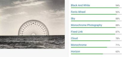 Etiquetas de la Google Cloud Vision API para 'Transportador', de Chema Madoz