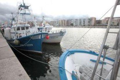 Barcos de pesca amarrados en el puerto gaditano de Algeciras.