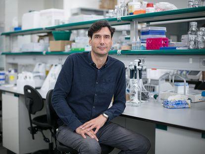 Manuel Serrano, experto en envejecimiento del Instituto de Investigación Biomédica de Barcelona, en 2017.