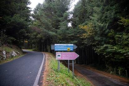 Acceso al Monasterio de San Pedro de Rocas, donde se proyecta ampliar la vía y talar árboles catalogados.