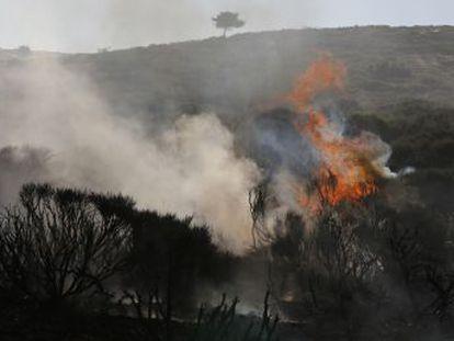Centenares de profesionales intentan controlar el avance de los fuegos