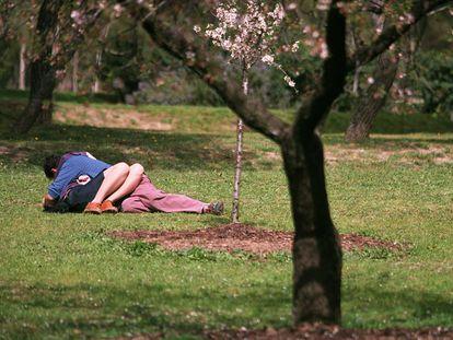 Una pareja, en un parque de Madrid.