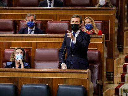 El presidente del Partido Popular, Pablo Casado, durante una sesión de control al Gobierno en el Congreso de los Diputados.
