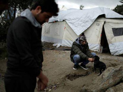 Un refugiado trata de calentarse y otro juega con un perro en el campo de Moria, a principios de diciembre.