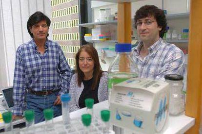 Carlos López Otín, Gloria Velasco y Xosé S. Puente, de izquierda a derecha.