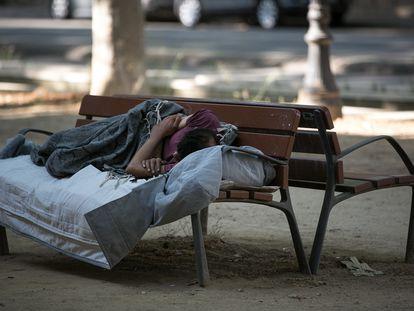 Una persona sin hogar duerme en un banco del paseo de Picasso de Barcelona.