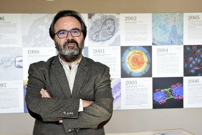 El genetista Lluís Montoliu, en una imagen de archivo.