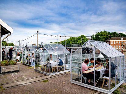 Los clientes de un restaurante de Ámsterdam ocupan pequeños invernaderos para mantener la distancia de seguridad.