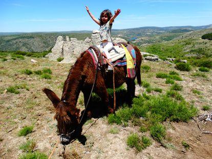 Una niña monta uno de los burros de Casi.