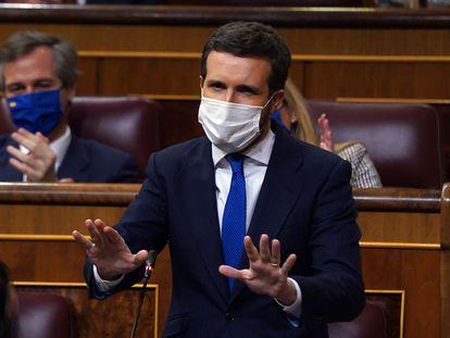 Pablo Casado durante una sesión de control al Gobierno en el Congreso.