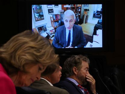 Senadores escuchan al doctor Anthony Fauci, que interviene ante un comité del Senado por videconferencia.