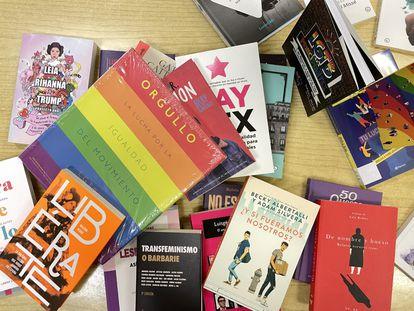 Algunos de los 32 libros retirados de los institutos de Castellón por orden de una juez, en la Biblioteca Municipal de Castellón.