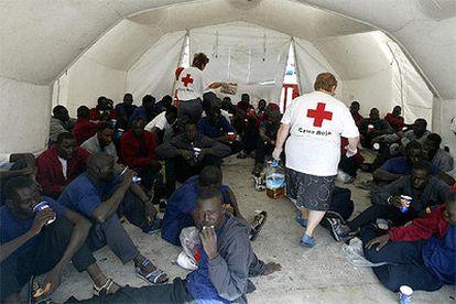 Algunos de los 75 inmigrantes llegados al puerto timerfeño de Los Cristianos, al sur de Tenerife.