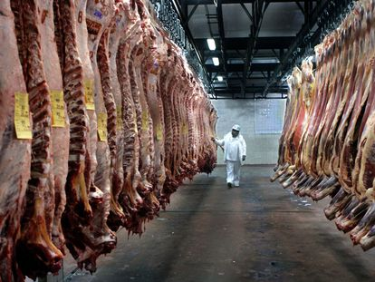 Un inspector supervisa carne de res en una planta frigorífica bonaerense, el pasado mes de julio.