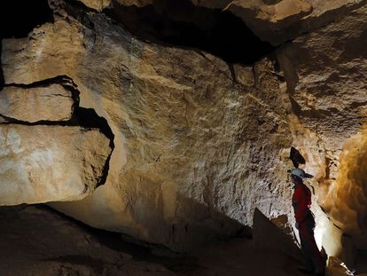 Un investigador analiza las pinturas rupestres de la cueva de Ojo Guareña (Burgos)