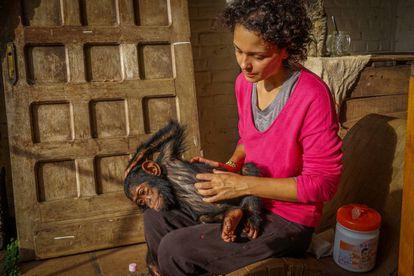 Itsaso Vélez, la directora técnica del santuario, comprueba el estado de salud de Aïcha.