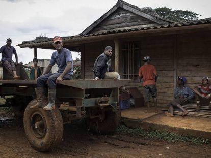 Trabajadores de temporada, provenientes de Santiago de Cuba, esperan el comienzo de la jornada en una de las granjas de Güira de Melena, en la provincia de Artemisa.