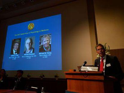 Los premiados son los estadounidenses Jeffrey C. Hall, Michael Rosbash y Michael W. Young