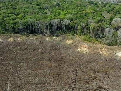 Zona deforestada de la Amazonia brasileña.