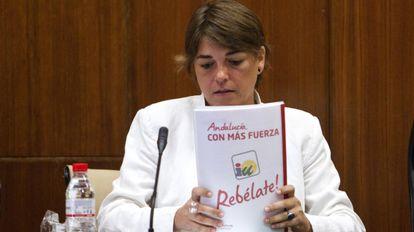 Elena Cortés, en un momento de su intervención en el Parlamento.