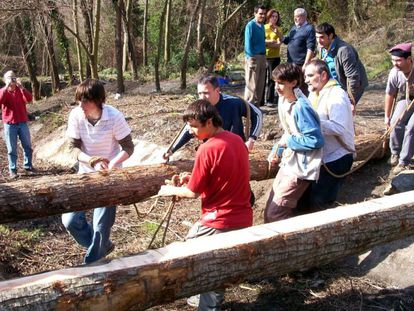 35 centros educativos de Mallorca reforestan la sierra de Tramuntana.