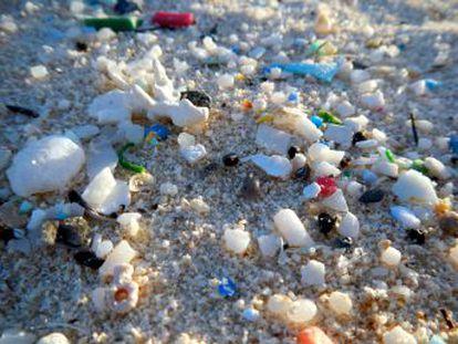 Un estudio piloto demuestra que las heces de personas de varios países contenían partículas de una decena de plásticos