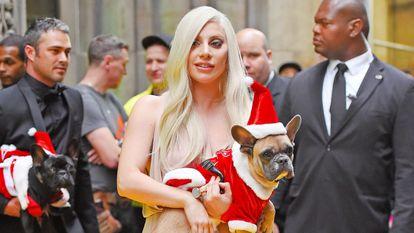 Lady Gaga (y a la izquierda su expareja Taylor Kinney), con sus bulldog franceses en diciembre de 2015 en Nueva York.