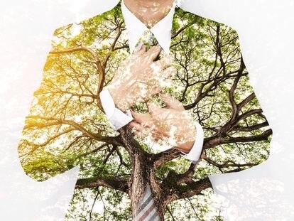 Así se adaptan las pymes al reto de la transición ecológica