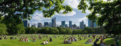 Hyde Park, Central Park (en la foto) o el Retiro, cualquier parque es carne de panorámica