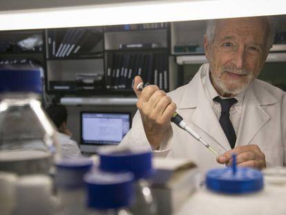 Luis Enjuanes, jefe del laboratorio de coronavirus del Centro Nacional de Biotecnología del CSIC.