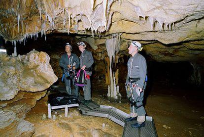 Imagen del documental <i>Cave of Forgotten Dreams,</i> de Werner Herzog, sobre la cueva de Chauvet-Pont-d&#39;Arc.