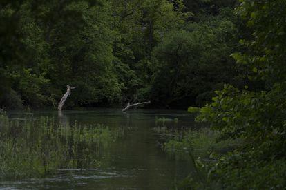 El río León a la altura de Belton (Texas), lugar donde fue encontrado el cuerpo de Vanessa Guillén.