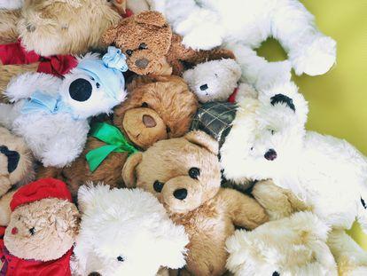 Varios osos de peluche