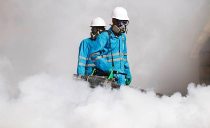 Una imagen de archivo de dos trabajadores que rocían pesticidas.