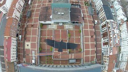 Vista aérea de la obra 'The Vulture Shadow'.