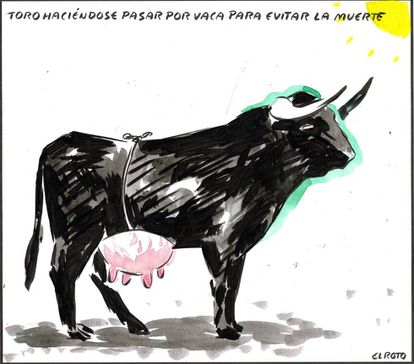 """""""A bull passing itself off as a cow in order to avoid death."""""""