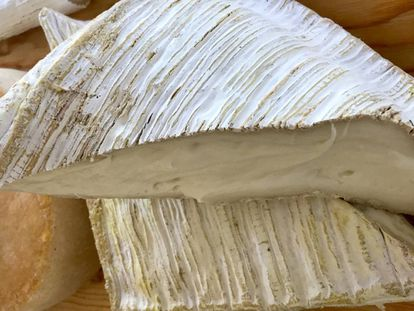 Queso Briqueta. Leche pasteurizada de cabra, pasta blanda y corteza enmohecida blanca con 90 días de maduración. Lácteas Argudo  Campillo,  (Málaga )
