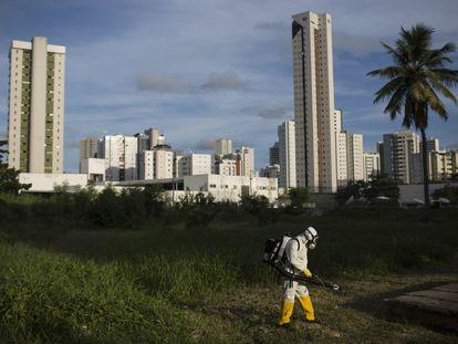 Una fumigación en Recife, Brasil.