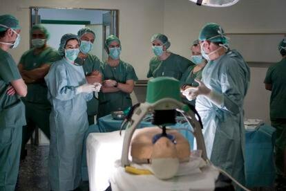 Miembros del equipo de transplantes de órganos de un hospital de Granada. M. ZARZA