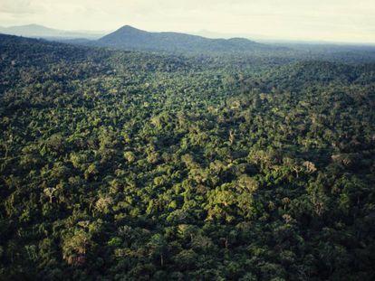 Vista aérea del Amazonas, en el norte de Brasil.