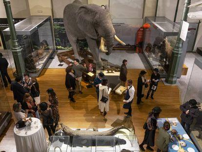La celebración del cumpleaños de Darwin en el Museo Nacional de Ciencias Naturales.