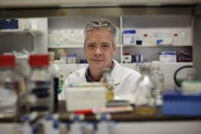 Ron Fouchier, en su laboratorio.