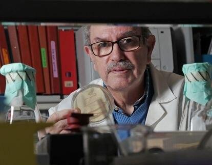 Vicente Larraga, investigador experto en vacunas, en su laboratorio del CSIC.