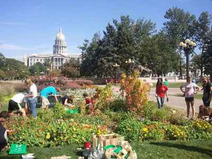 Un grupo de voluntarios trabajan en el huerto instalado en un jardín público frente al Capitolio de Denver (Colorado, Estados Unidos).